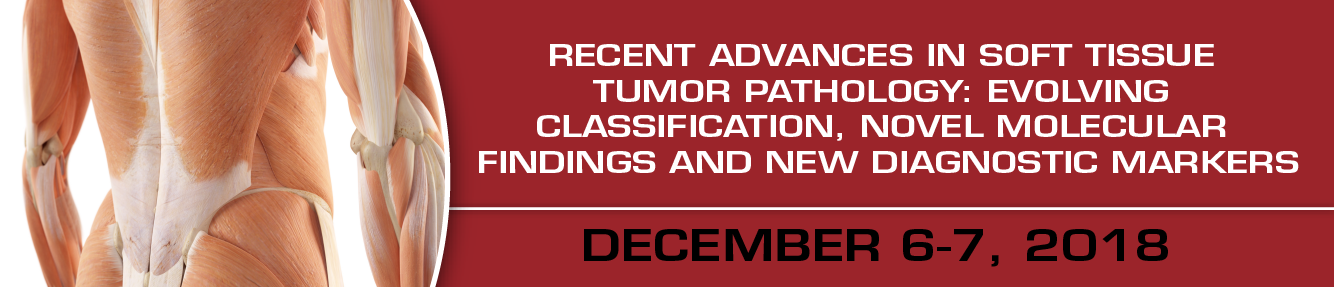 Recent Advances in Soft Tissue Tumor Pathology: Evolving Classification, Novel Molecular Findings and New Diagnostic Markers