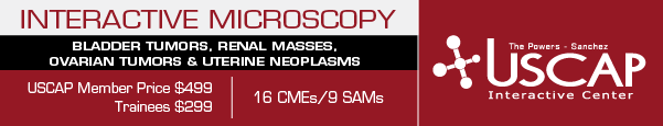 Interactive Microscopy: July 23-24, 2016