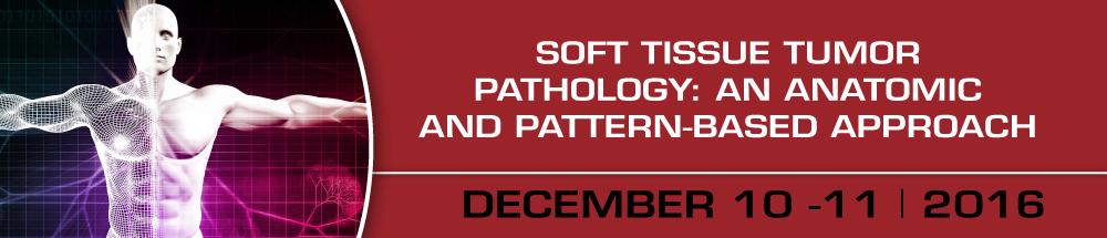 Interactive Microscopy: December 10-11, 2016