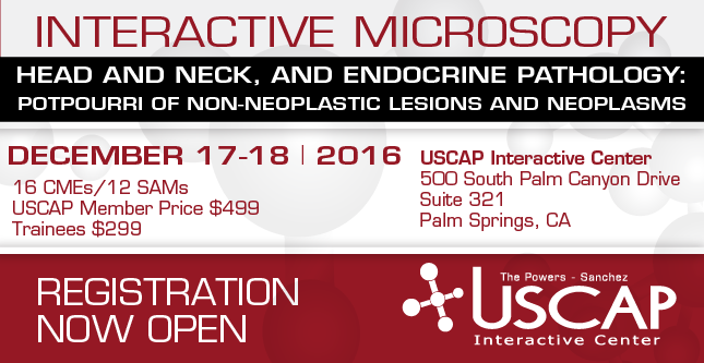 Interactive Microscopy: December 17-18, 2016