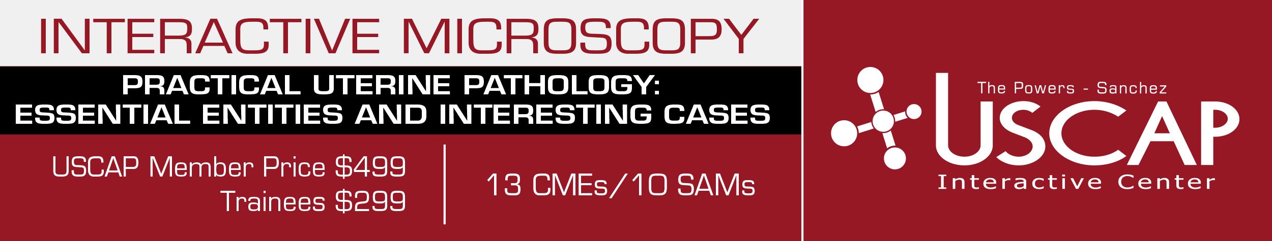 Interactive Microscopy: November 19-20, 2016