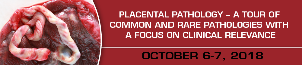 Placental Pathology - A Tour of Common and Rare Pathologies with a Focus on Clinical Relevance