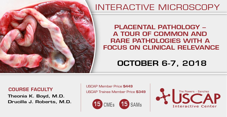 Interactive Microscopy: October 6-7, 2018