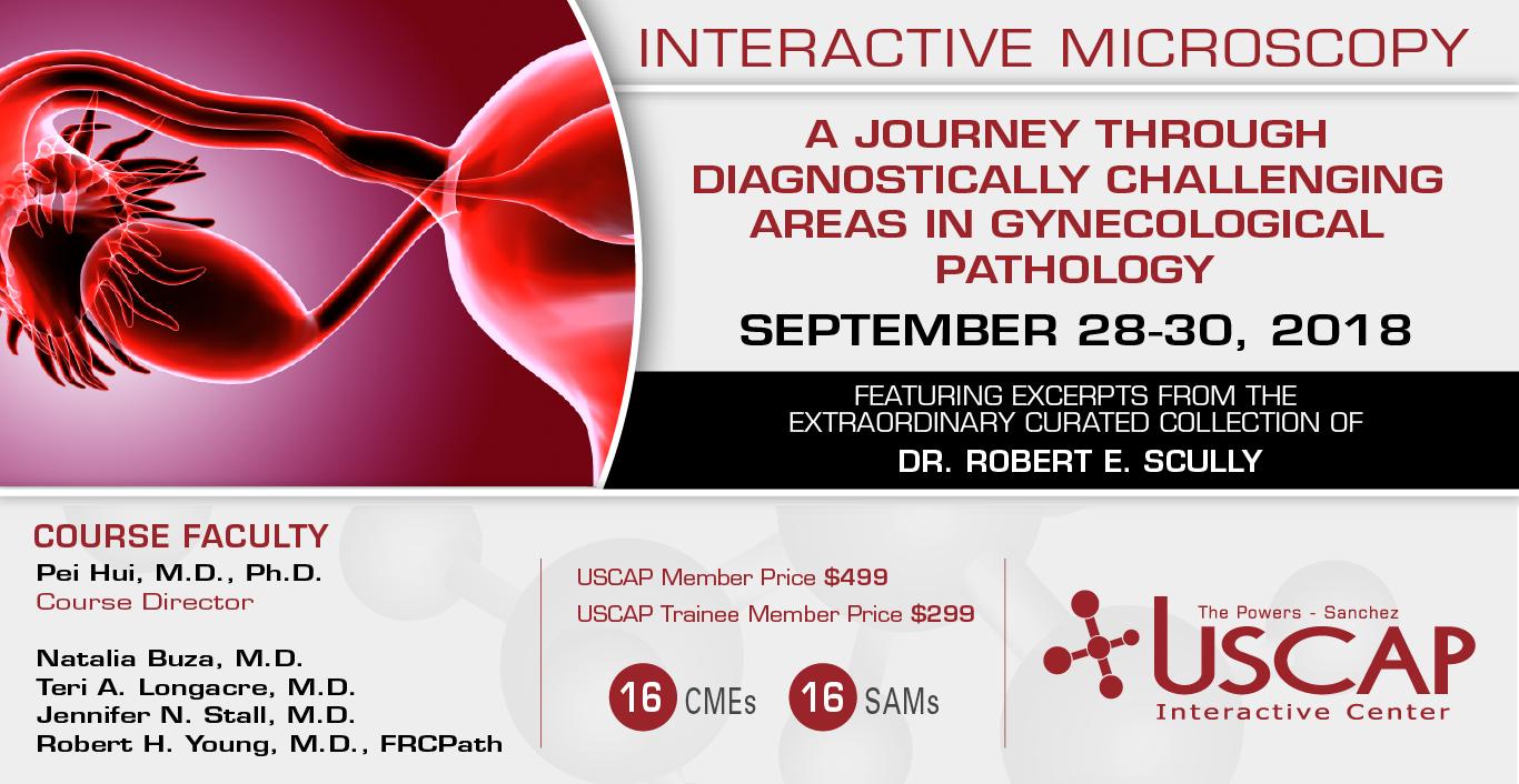 Interactive Microscopy: September 28-30, 2018
