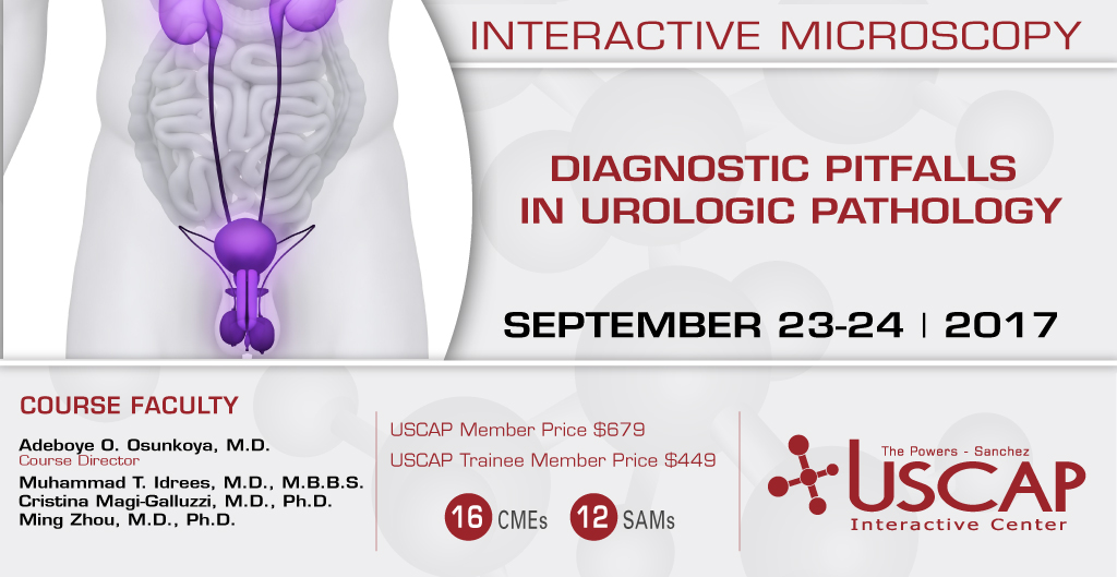 Interactive Microscopy: September 23-24, 2017
