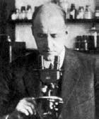 Victor Jacobsen